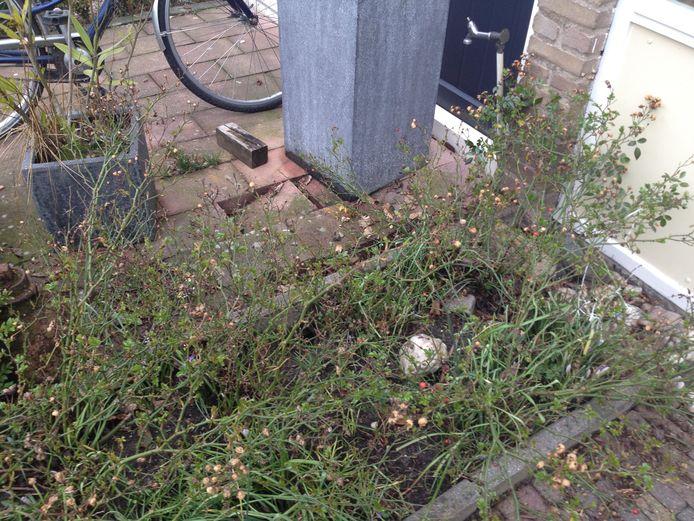 Verzakking in het trottoir van een voortuin van een woning in Over het Lange Water.