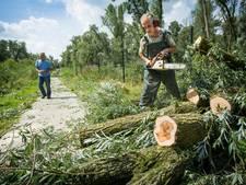 Gemeente Ermelo: Het is levensgevaarlijk in het bos