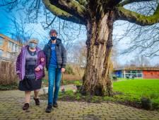 Martijn (17): 'Een wandelingetje maken met een oudere geeft een waardevol gevoel'