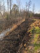 Schade na de brand in natuurgebied Spierbroek in Bornem