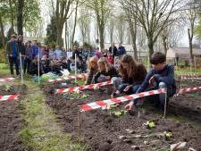 Klundert, Fijnaart en Willemstad krijgen 'educatieve tuinen'