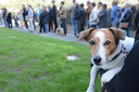 Onder andere in Zwijndrecht werd er al urnenveld en strooiweide voor dieren geopend