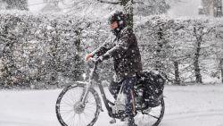 33 biljard: zoveel sneeuwvlokken vielen er gisteren in Vlaanderen