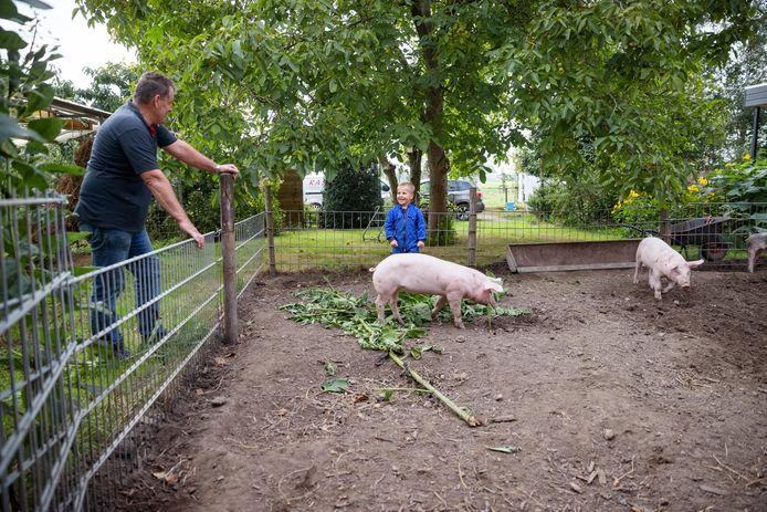 Heijningen - 25-9-2021 - Foto: Pix4Profs/Marcel Otterspeer - Van West-Brabantse bodem: een kijkje bij de Rashoeve van de familie Van Rosendaal. Piet en Karin worden er vandaag geholpen door kleinzoon Niek.
