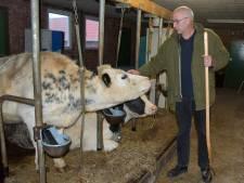 'Opeens hadden we drie zorgboerderijen, dat was niet de bedoeling'; Binnenste Buiten verlaat Hoek