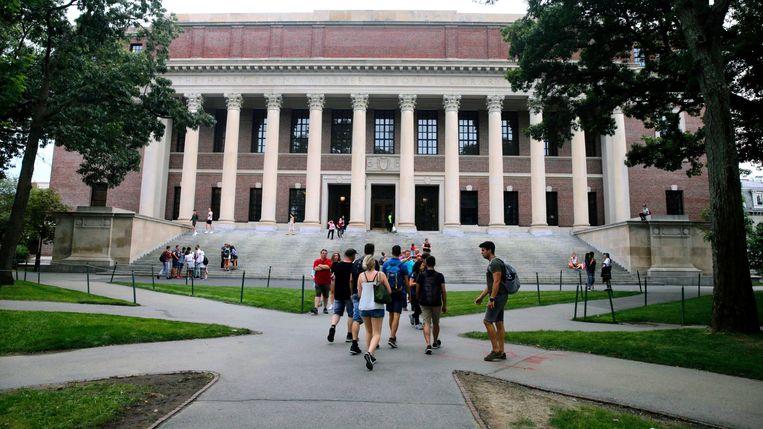 De campus van Harvard University in Cambridge, Massachusetts. Beeld AP
