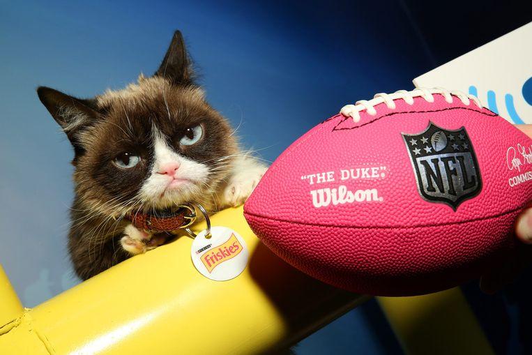 Zelfs de Grumpy Cat is van stal gehaald om reclame te maken rond de Super Bowl. Beeld getty