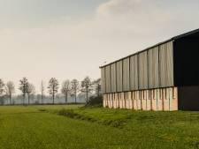 Hoe kansrijk is de Almelose megastal voor 16.000 varkens?