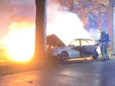 Auto knalt tegen boom en vliegt in brand op kruising in Horssen