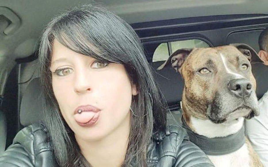 Het onderzoek richt zich vooral op dieren die betrokken waren bij een drijfjacht vlak in de buurt, maar ook op vijf honden van Pilarski en haar partner.