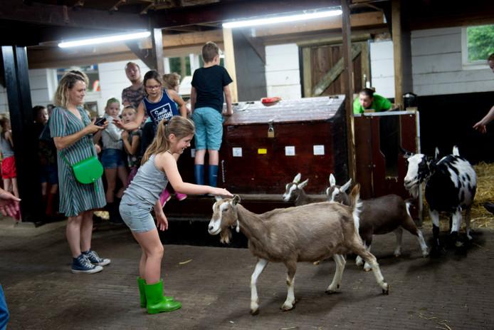 Een meisje aait een geitje. Het zijn lotgenoten, want allebei schuilen ze voor het onweer.