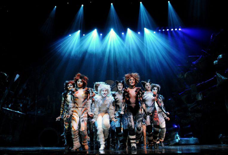 De Engelstalige versie van de wereldberoemde musical Cats in de RAI in Amsterdam. Beeld EPA