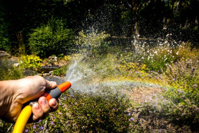 Hoeksche Waarders merken de klimaatverandering aan droogte in de tuin. Archieffoto ter illustratie.