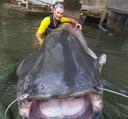 VIsser Geoffrey Rulleau toont zijn monsterlijke vangst in de Seine nabij Parijs.