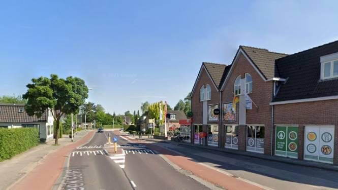 Provincie Gelderland stelt aanpak oversteekplaats in Loenen uit door boom