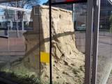 Mag het Zandsculpturenfestival dit jaar haar lustrum vieren in Oss?