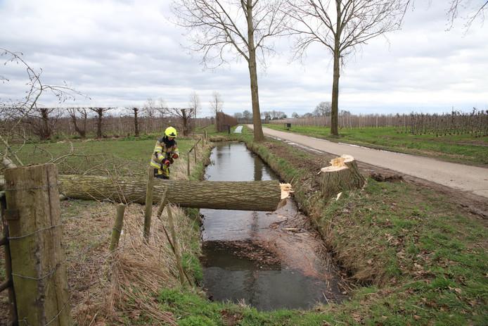 De boom ligt plat in Lienden.