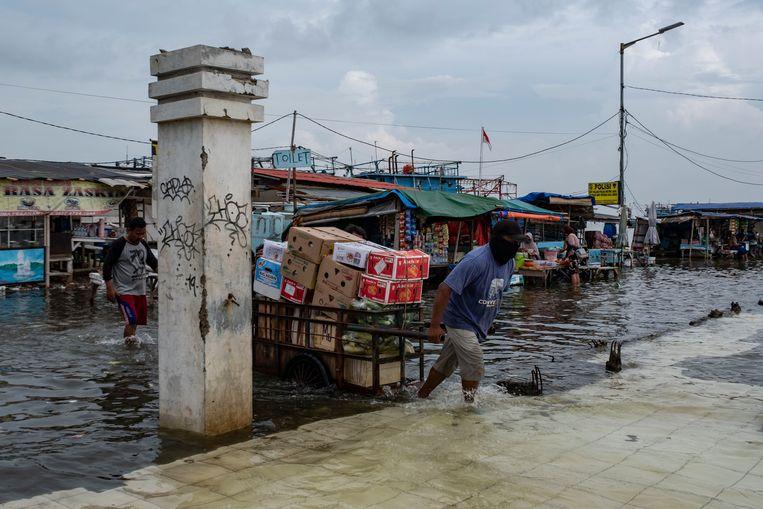 Bodemdaling voor veel kuststeden nog groter probleem dan zeespiegelstijging - Volkskrant