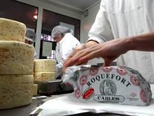 Kaasboeren boos: kipnuggets scoren hoger op voedingswaarde dan roquefortkaasje