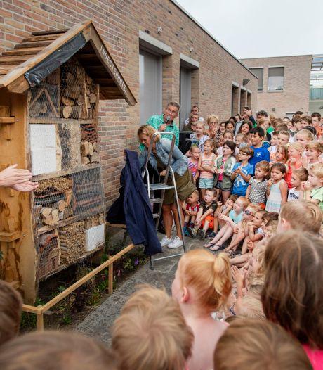 Geen mooier insectenhotel dan dat van Pieterke in Oisterwijk