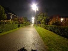 Straatverlichting Utrechtse Heuvelrug wordt gedimd