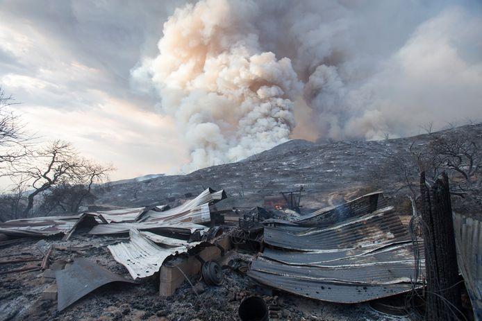 De schade van de bosbrand wordt geraamd op ruim 8 miljoen dollar, zo'n 6,7 miljoen euro.