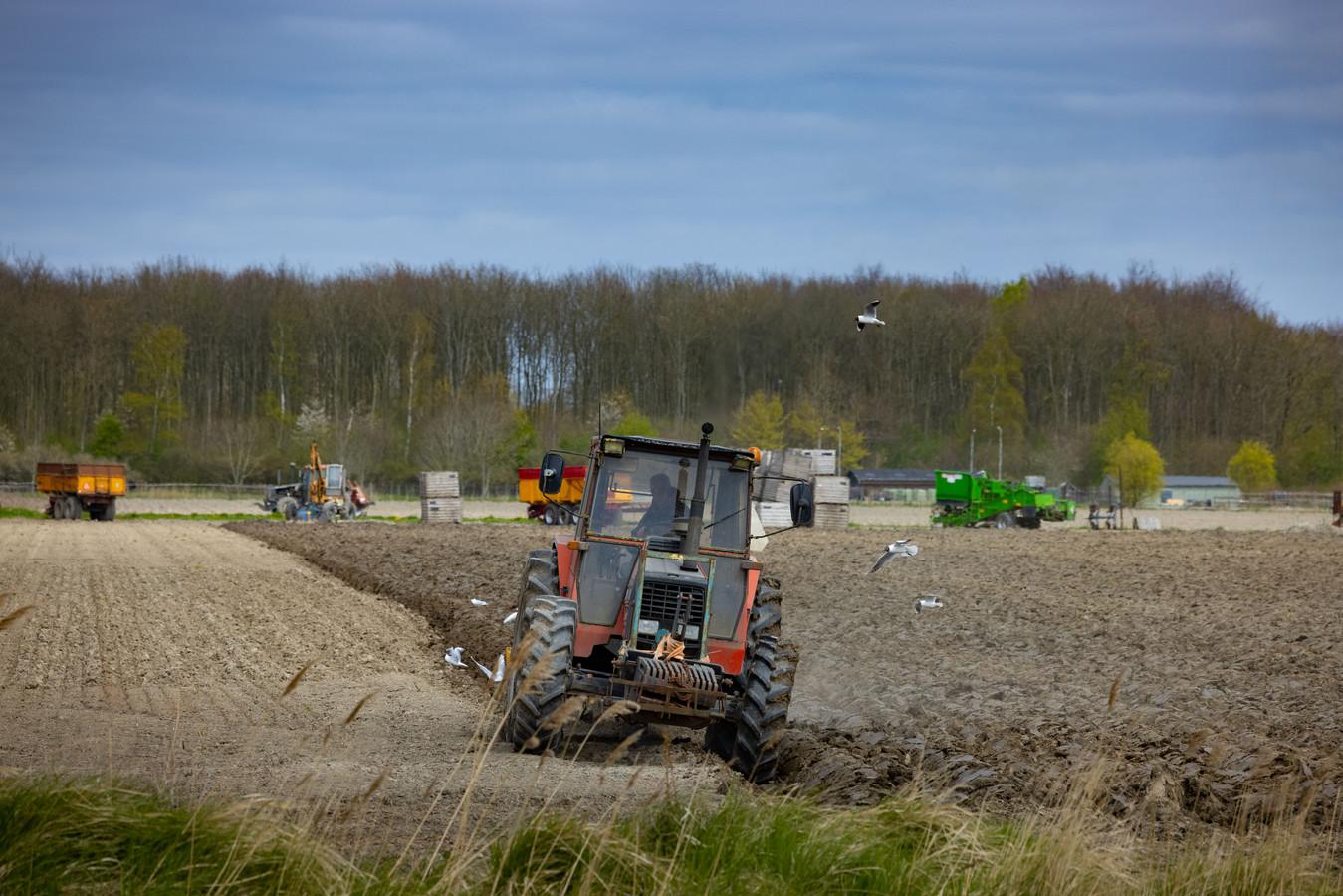 Een landbouwer aan het werk aan de Bisonweg in Swifterbant-Zuid, deze plek is aangewezen als uitbreiding  van het dorp.