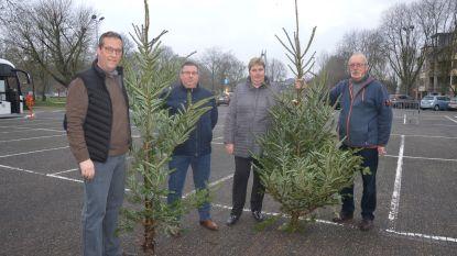 Kerstbomen gaan op brandstapel op Dr. Hemerijckxplein