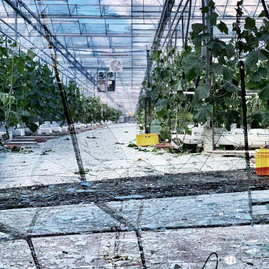 Vele honderden ruiten sneuvelden door de windhoos.