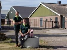 Erwin Altena neemt rol vader Jan over: 'Pa heeft een goede naam in de varkenssector, maar ik doe het op mijn eigen manier'