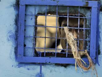 VN klaagt opnieuw foltering in Afghaanse gevangenissen aan