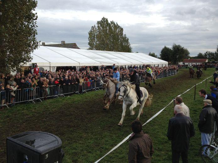 Paarden en feesten staan centraal op Belgiek Koerse.