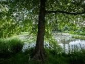 Roep om onderzoek na verkrachtingen onder toezicht in Brabant