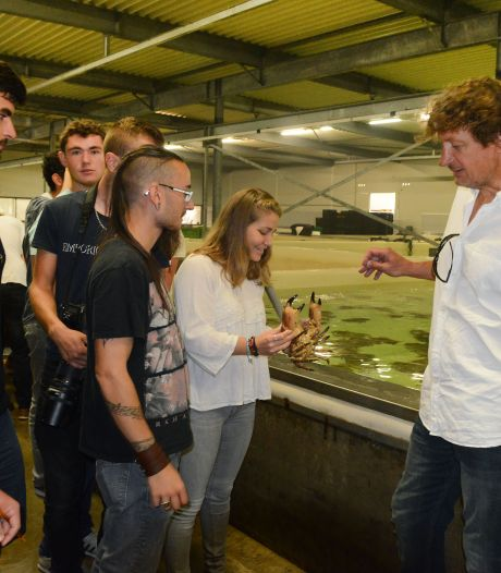 Uitbreiding in Yersekse schaal- en schelpdierindustrie zet door: Aquamossel-Triton neemt Le Petit Pêcheur over