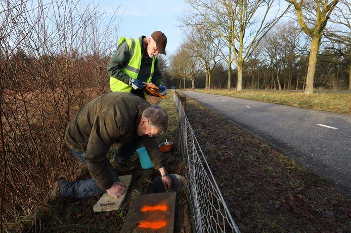 Wim Steenbakkers op de voorgrond en Jo van Zanten controleren of padden, salamanders, kikkers etc. ook veilig aan 'het verkeer' kunnen deelnemen.
