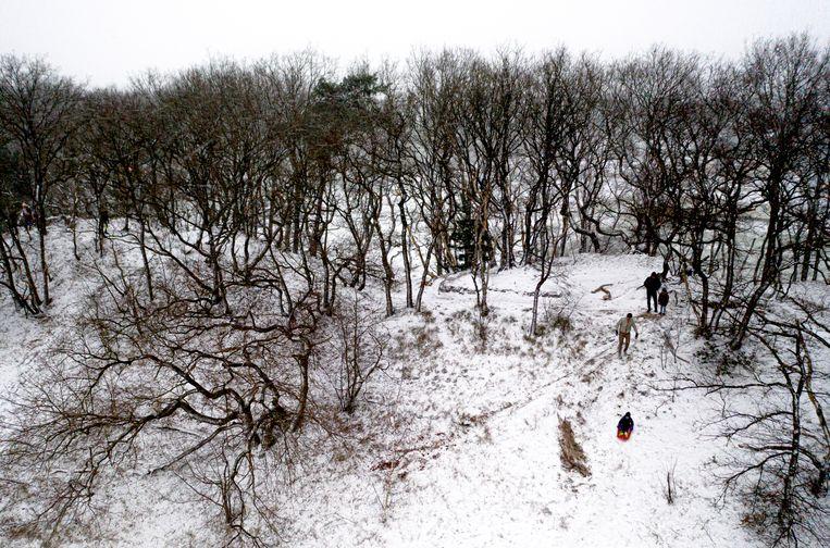 Het is alweer acht jaar geleden, signaleert de boswachter, dat er gesleed kon worden in de duinen. Beeld Freek van den Bergh