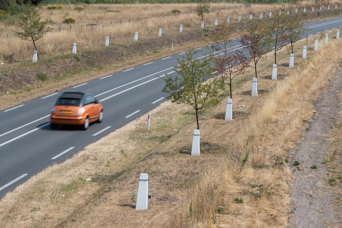 Het Witte Lint. Een dor landschap bij het mislukte landschapskunstwerk langs de N348. Het doek voor het project valt nu definitief.
