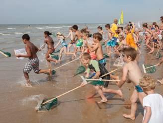 Vijf tips voor weekendtrips in Brugge en aan de kust: van garnaalkruien tot EK-koorts op de kermis