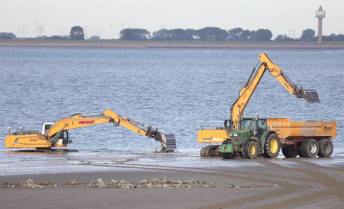 Vorig jaar werd het strand van Perkpolder ook groter gemaakt.