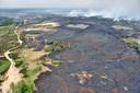 Zo'n 600 zwartgeblakerde hectares bleven achter na de grote natuurbrand uit voorjaar 2011 op de Kalmthoutse Heide.