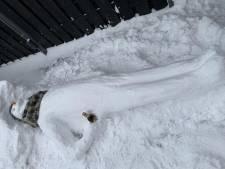 Bedrijf uit Westerhaar geeft personeel ijsvrij onder één voorwaarde: iedereen moet een sneeuwpop maken. 'Lachen toch?'