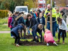 'Internationale' boomplantdag in Heerde
