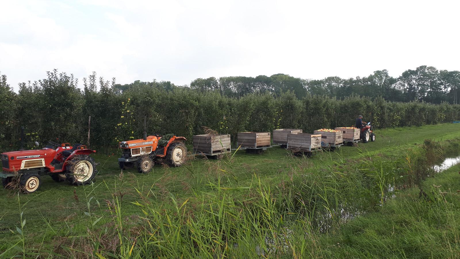 Maandag zijn de mannen en vrouwen gewoon weer appels aan het plukken. Soortgelijke karretjes en tractors zijn gestolen.