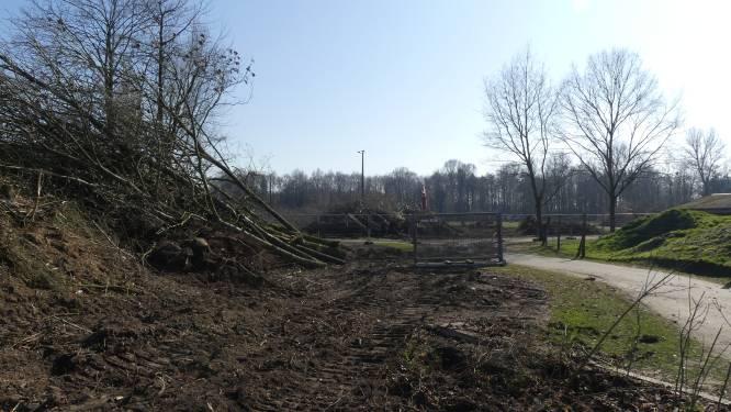 """Ingang De Brielmeersen tijdelijk werfzone: """"Bomen maken plaats voor kunstgrasvelden"""""""