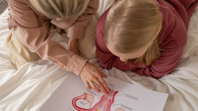 """De clitoris krijgt vanaf september meer aandacht op school. Seksuoloog Wim Slabbinck: """"Geeft meisjes macht over hun lichaam"""""""
