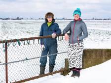 Zes vragen over windmolens in de polder bij Alphen