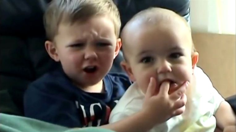 De Britse broertjes Harry en Charlie werden door het familiefilmpje 'Charlie bit my finger' per ongeluk wereldberoemd. Beeld YouTube