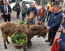 De ezelin was beladen met manden vol palmtakken.
