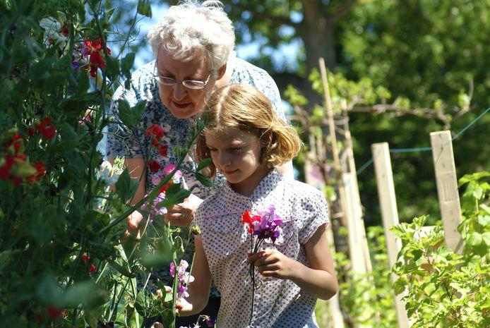 In de proeftuin moeten ouderen én jongeren meer over de natuur leren.