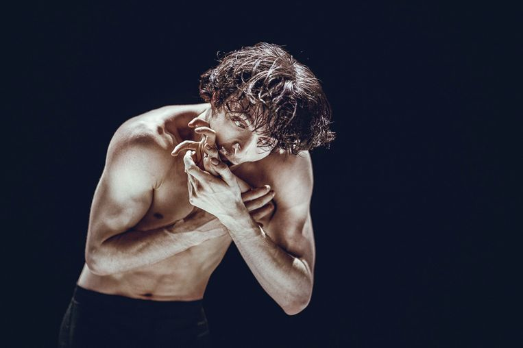 Danser Charlie Skuy in The Big Crying, choreografie van Marco Goecke door Nederlands Dans Theater 2. Beeld Rahi Rezvani